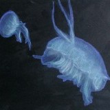 monochromatic jellyfish - pastel on paper